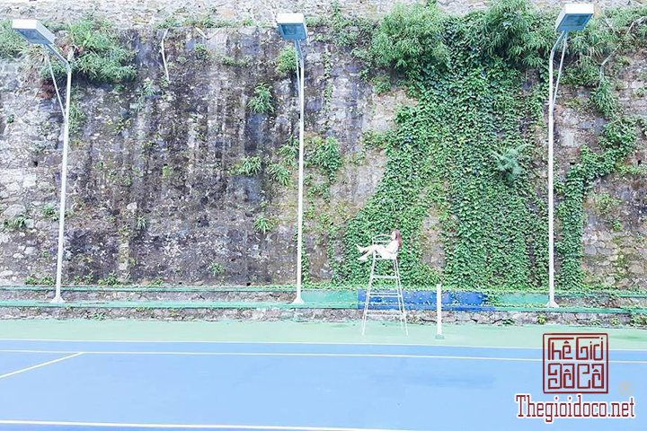 Review-Tam-Dao-Huong-dan-chi-tiet-di-Tam-Đao-voi-gia-re-nhat-cho-cac-ban (21).jpg