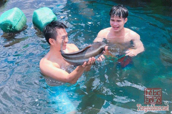 Review-Phu-Yen-Binh-Dinh-noi-cua-ve-dep-thuan-tuy-cho-nhung-ban-co-y-dinh-di (7).jpg