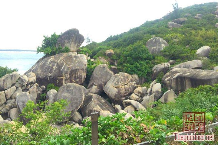Review-Quy-Nhon-Dia-diem-du-lich-cuc-ky-hap-dan-tai-Binh-Dinh  (2).jpg