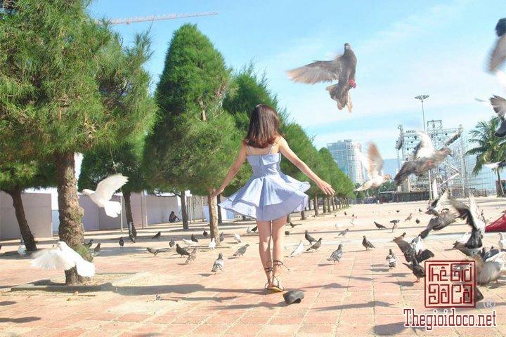 Review-Hoi-An-Da-Nang-Cu-Lao-Cham-gia-re-bat-ngo-cho-cac-ban-tham-khao (23).jpg