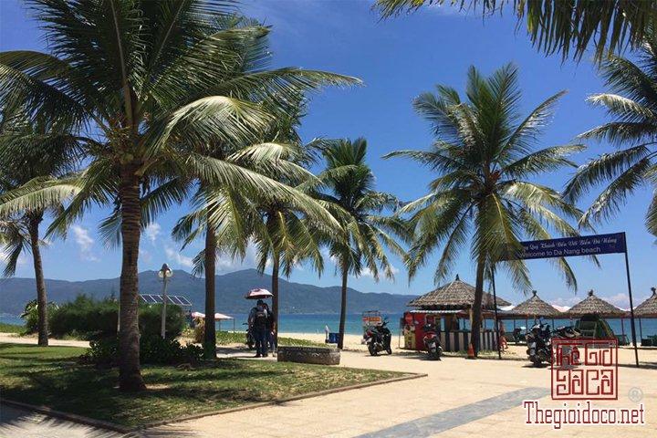 Review-Hoi-An-Da-Nang-Cu-Lao-Cham-gia-re-bat-ngo-cho-cac-ban-tham-khao (35).jpg