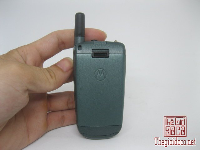 Motorola-V8088-Motorola-V-cuoi-MC2 (2).JPG