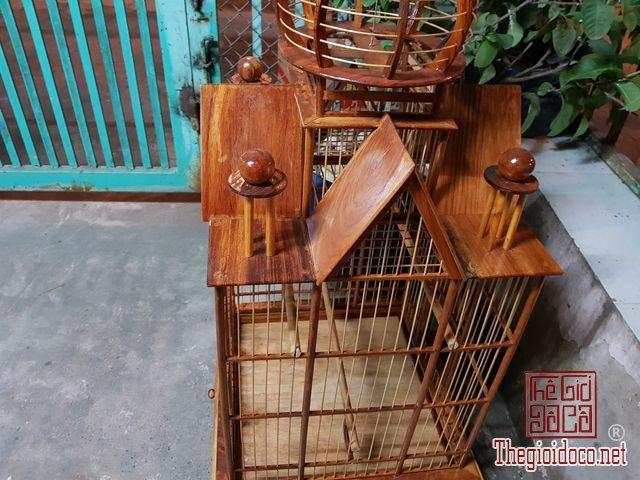 Long-chim-kieu-biet-thu-phong-cach-chau-au-01 (3).jpg