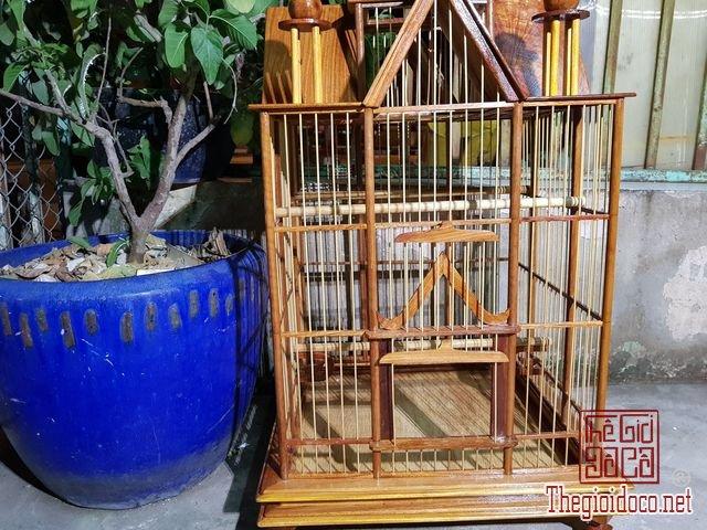 Long-chim-kieu-biet-thu-phong-cach-chau-au-01 (8).jpg