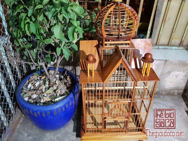 Long-chim-kieu-biet-thu-phong-cach-chau-au-01 (10).jpg