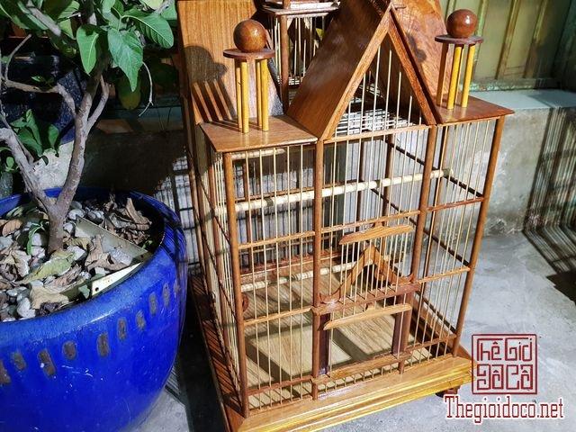 Long-chim-kieu-biet-thu-phong-cach-chau-au-01 (18).jpg