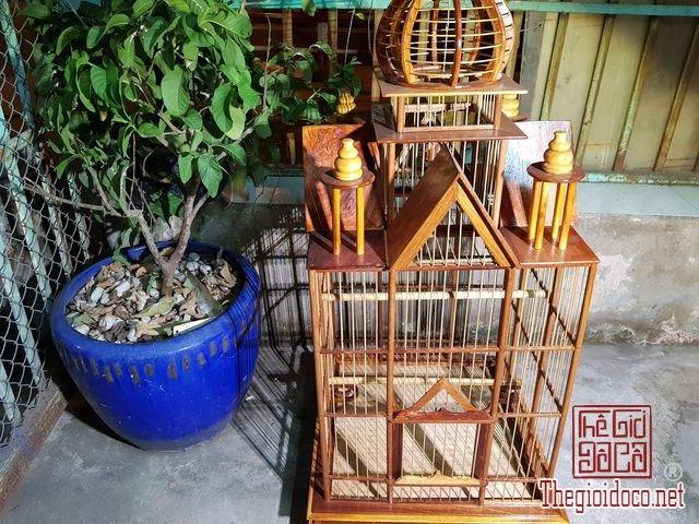 Long-chim-kieu-biet-thu-phong-cach-chau-au-02 (1).jpg