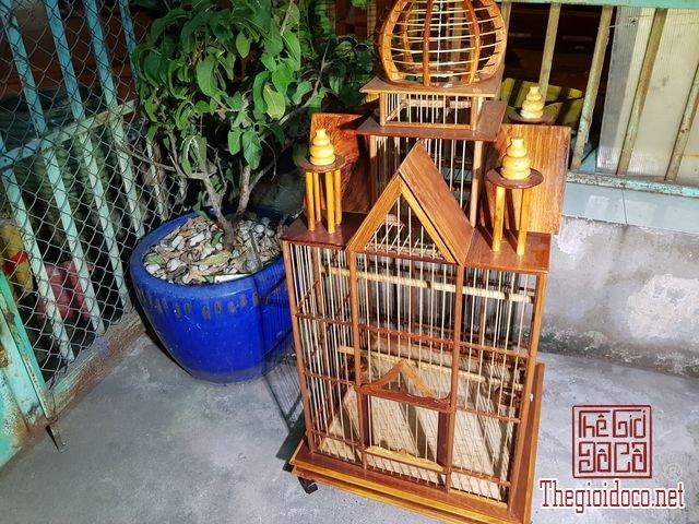 Long-chim-kieu-biet-thu-phong-cach-chau-au-02 (3).jpg