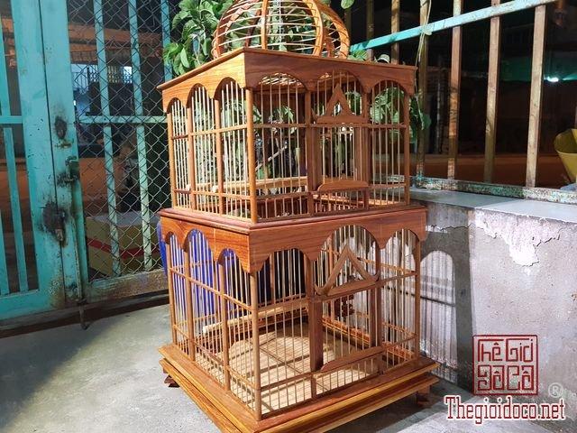 Long-chim-kieu-biet-thu-phong-cach-chau-au-03 (2).jpg