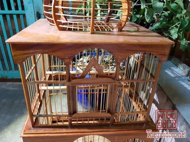 Long-chim-kieu-biet-thu-phong-cach-chau-au-03 (8).jpg
