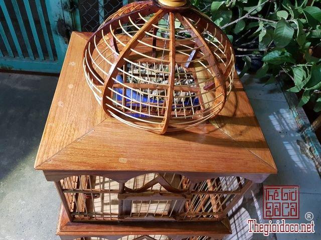 Long-chim-kieu-biet-thu-phong-cach-chau-au-03 (13).jpg