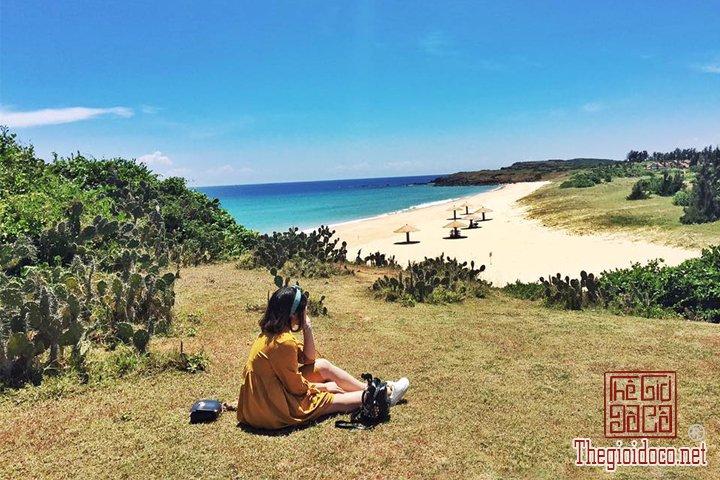 Review-Quy-nhơn-Tuy-hoà-Thien-duong-Bien-dao-Viet-Nam-ban-nen-den-mot-lan-trong-doi (5).jpg