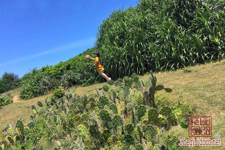 Review-Quy-nhơn-Tuy-hoà-Thien-duong-Bien-dao-Viet-Nam-ban-nen-den-mot-lan-trong-doi (13).jpg