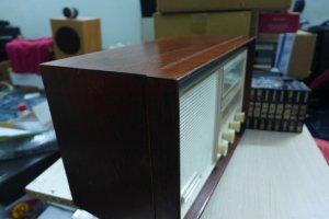 P1090232 (Large).JPG