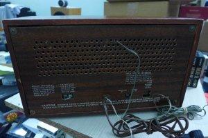 P1090234 (Large).JPG