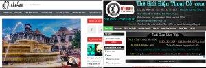 Nhung-trang-web-Mua-ban-Thu-thuat-Kinh-nghiem-hang-dau-Viet-Nam (5).jpg