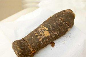 Một sai lầm vô cùng to lớn của các nhà khảo cổ vì lầm xác ướp của một em bé thành chim ưng