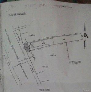 Đất mặt tiền Huỳnh Tấn Phát, Q7: 7m x 50m: 18 tỷ