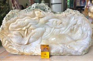 Hàng độc,  Cá Chép + Sen, nặng 38kg