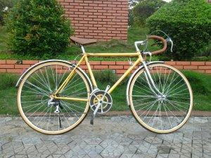 Xe đạp Plasma - Hàng bãi Nhật