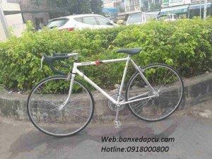 Xe đạp đua cổ điển BRIGESTONE radac japan