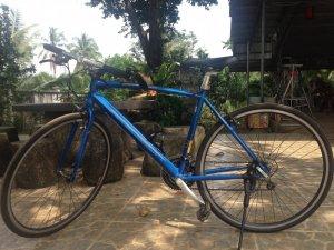 Xe đạp precision size 50
