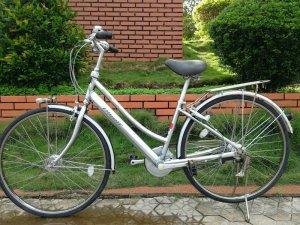 Xe đạp Bridgestone màu bạc -...