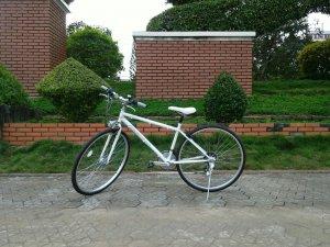 Xe đạp Progress - Hàng bãi Nhật