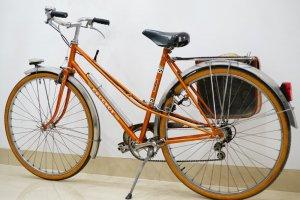 Xe đạp Peugeot cá vàng màu da đồng (LH: Ms.Hằng 0979.837.869)