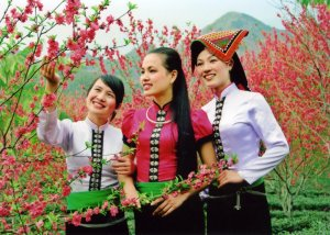 Ngày tết cổ truyền của đồng bào các dân tộc thiểu số ở Việt Nam như thế nào ?
