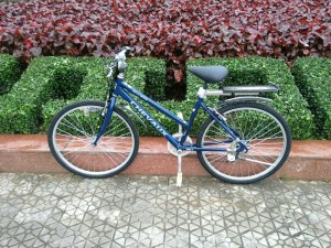 Xe đạp Chevaux - Hàng bãi Nhật