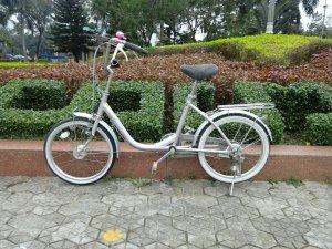 Xe đạp Diora - Hàng bãi Nhật