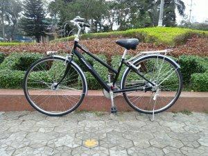 Xe đạp Bridgestone đen - Hàng...