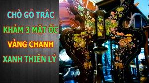 Cho-go-trac-kham-3-mat-oc-vang-chanh-xanh-thien-ly (1).jpg