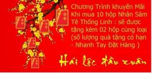 aupair-vietnam2.jpg