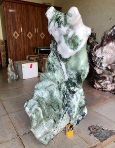 Cây đá xanh ngọc, cao 1 mét