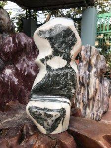 MS 9057.Cây đá có hình ảnh Rùa...