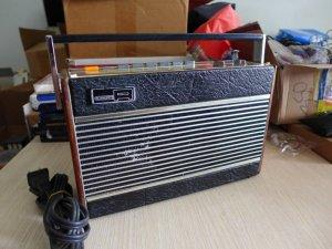 HCM - Q10 - Bán radio Robert RP-26P
