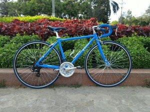 Xe đạp Renault - Hàng bãi Nhật (MS106)