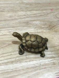 Con Rùa Bằng Đồng  Châu Âu - Đồ Xưa - hàng Xách tay Từ Mỹ