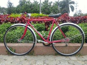 Xe đạp California - Hàng bãi Nhật (MS111)