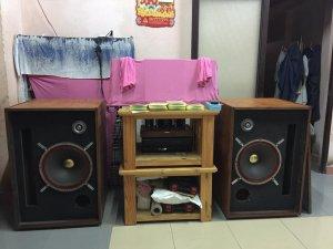 Bán Lỗ Vốn Để Thu Hồi Tiền Cặp Loa Tru-Sonic 150FR Bass Toàn Giải 40Cm