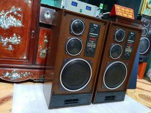 Loa Nga Radiotehnika - S90D ( Hoa Hậu - Hàng Bãi )