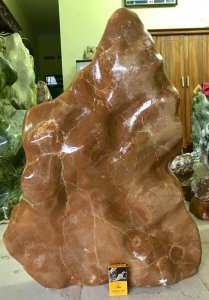 Cây đá độc lạ, hàng đáng được sưu tầm.,