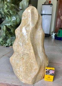 Cây đá can xít vàng, cao 47cm,...