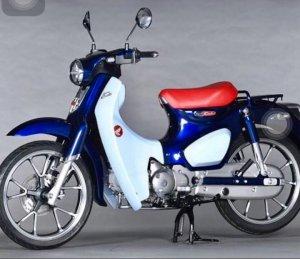 HONDA CUB 125cc (Đời 2018) Xe Thùng .... Zin Japan 100%