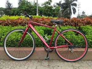 Xe đạp Bridgestone Ordino - Hàng bãi Nhật (MS127)