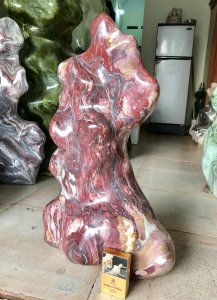 Cây đá thổ cẩm, giá 1tr500k