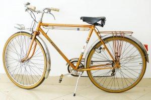 Xe Đạp Peugeot cá vàng màu da...