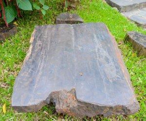 Bộ bàn ghế gỗ mun hoá thạch